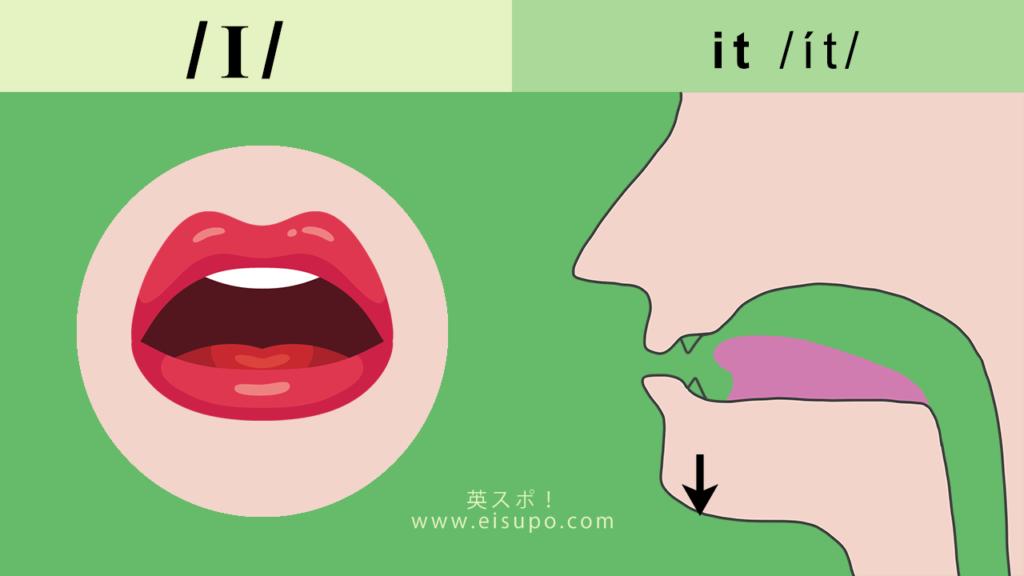 英語のIの正しい発音方法の図