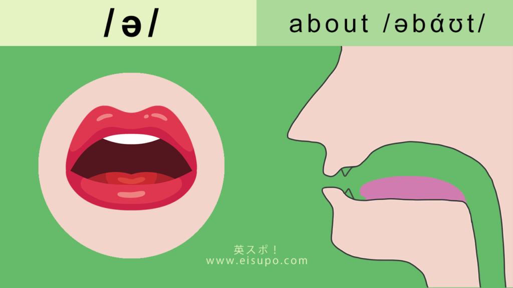 /ə/の正しい発音の仕方