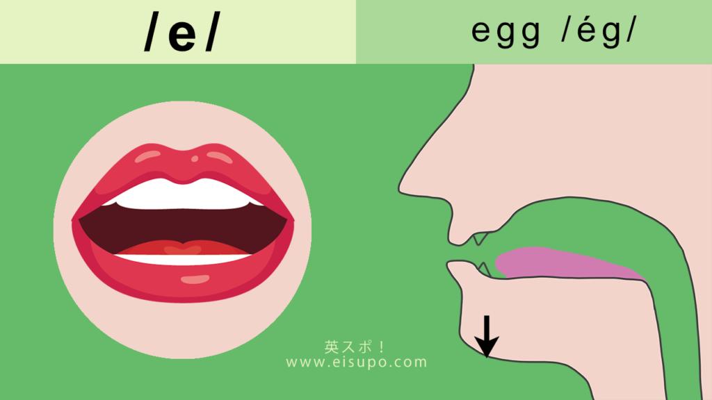 英語の/e/の正しい発音の仕方