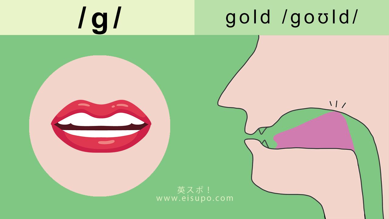 英語の発音方法:/g/の発音の仕方