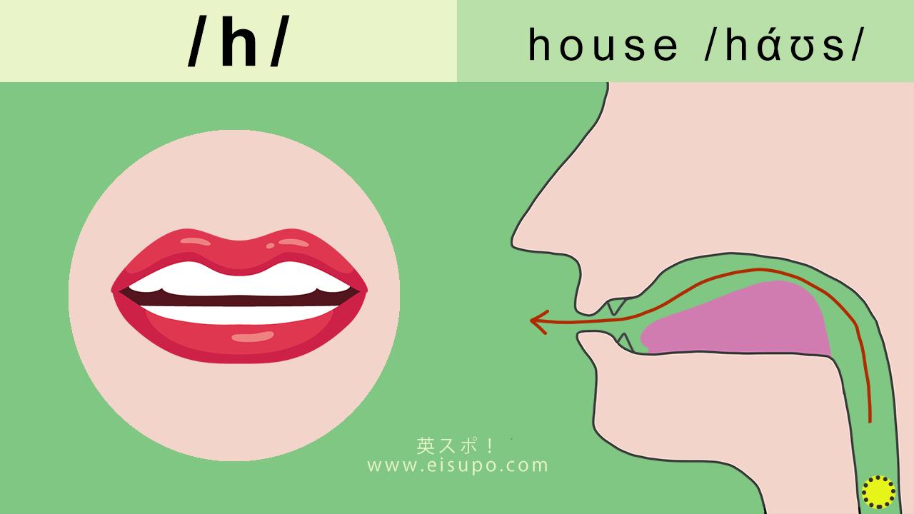 英語の発音方法 摩擦音 h