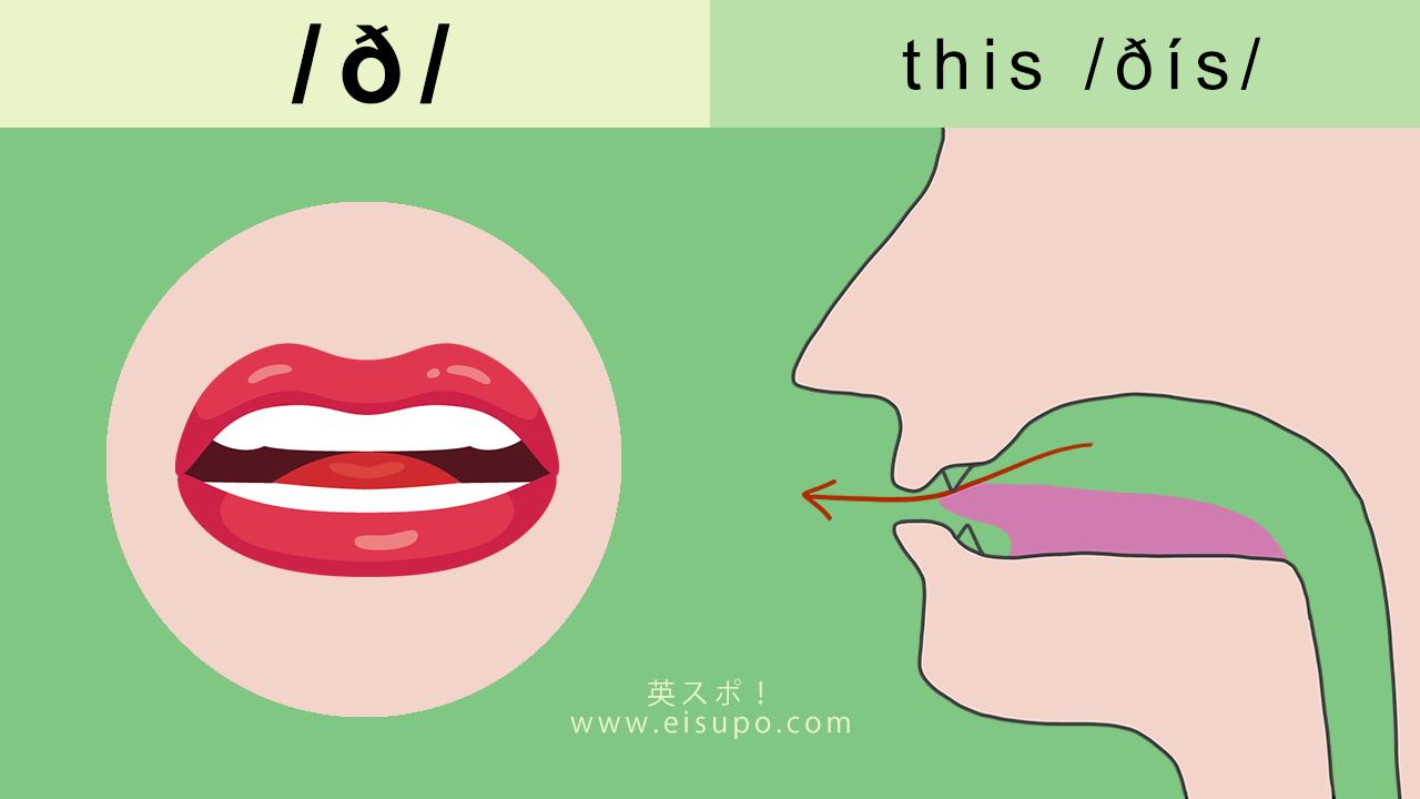 英語の発音方法 摩擦音 ð