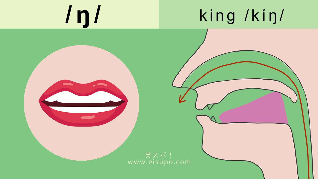 英語/ŋ/ の正しい発音の方法と仕方